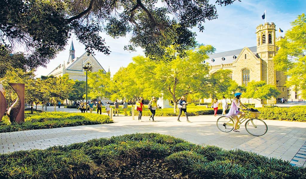 دانشگاه ادلاید استرالیا